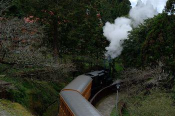 阿里山蒸汽火車
